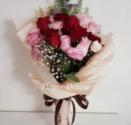 HB104 Pink & Red Roses
